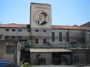 Slika Vinoplod Sibenik